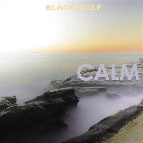 Calm by Black Wolf