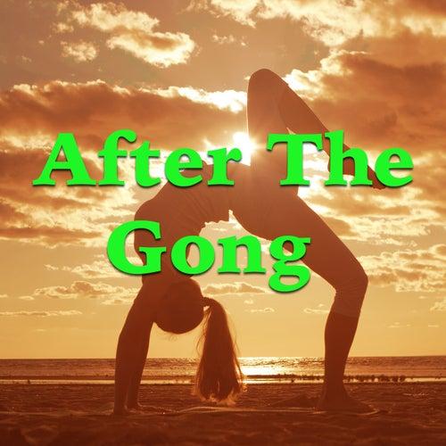After The Gong de Various Artists