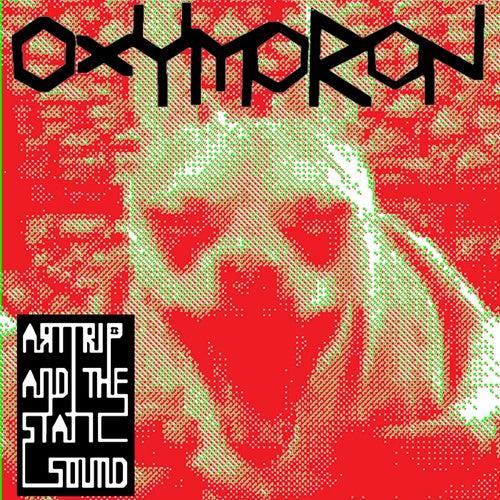 Oxymoron von Art Trip and the Static Sound