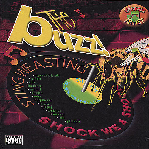 Buzz Riddim de Various Artists