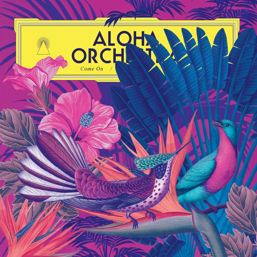Come On by Aloha Orchestra