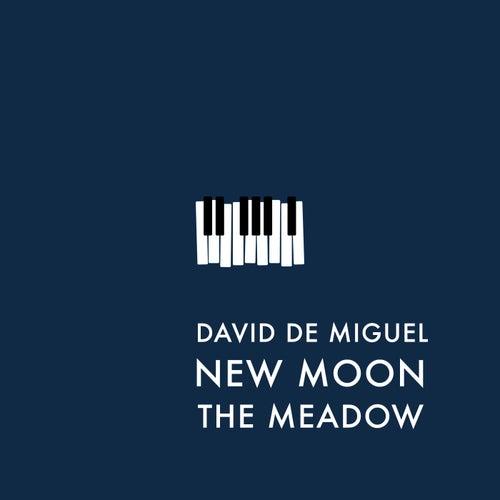 New Moon (The Meadow) by David de Miguel