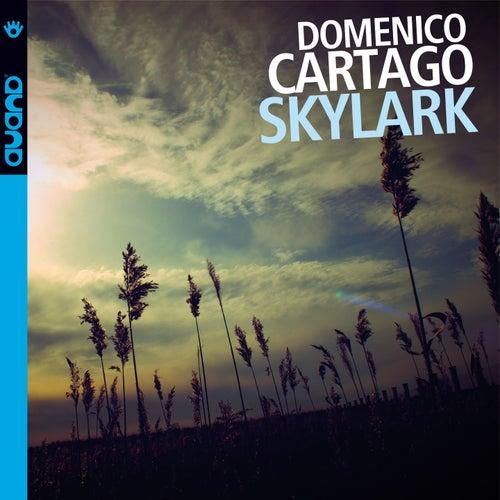 Skylark by Domenico Cartago