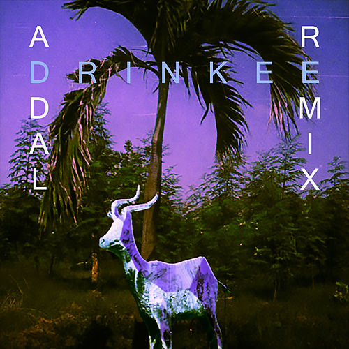 Drinkee (Addal Remix) by Sofi Tukker