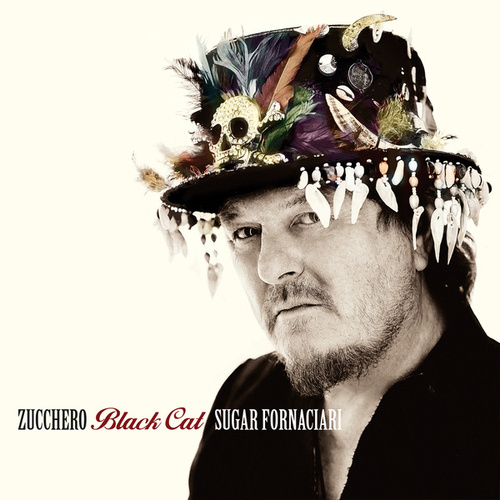 Black Cat von Zucchero