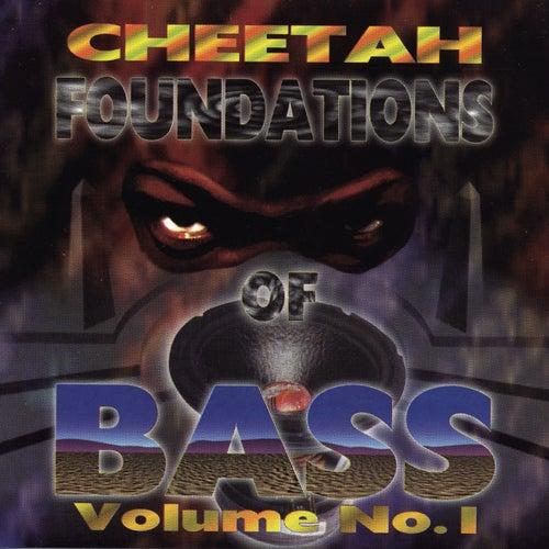 Foundations Of Bass Vol. 1 de DJ Magic Mike