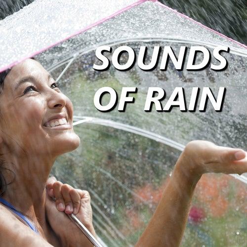Sounds of Rain fra Relaxing Rain Sounds
