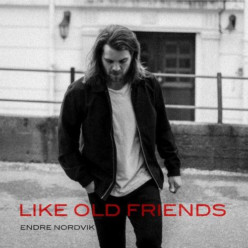 Like Old Friends by Endre Nordvik