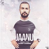 Jaanu by Garry Sandhu