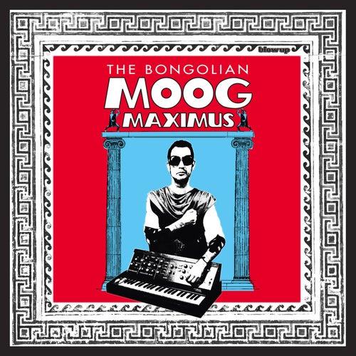 Moog Maximus de The Bongolian