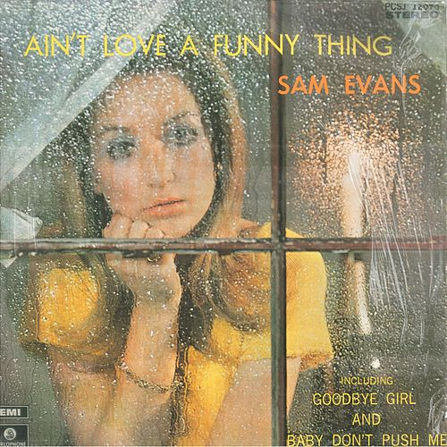 Ain't Love A Funny Thing by Sam Evans