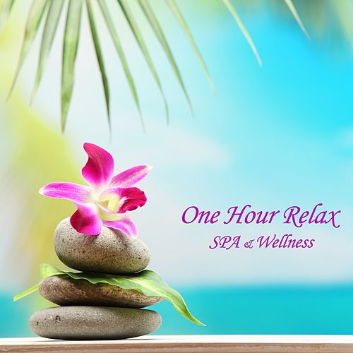 One Hour Relax (Spa & Wellness) by Caesar