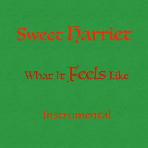 What It Feels Like (Instrumental) by Sweet Harriet