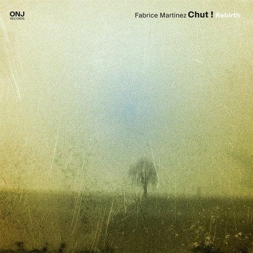 Rebirth (feat. Fred Escoffier, Bruno Chevillon & Eric Echampard) by Fabrice Martinez Chut !
