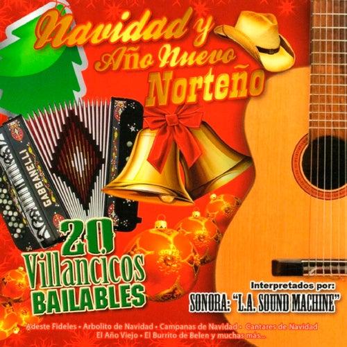Navidad y Ano Nuevo Norteno 20 Villancicos Bailables de Various Artists