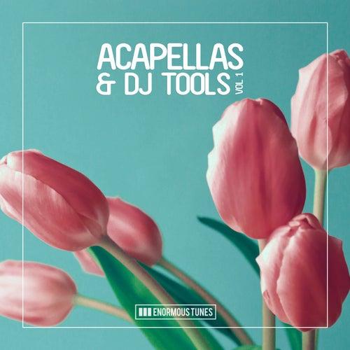 Enormous Tunes - Acapellas & DJ Tools, Vol. 1 von Various Artists