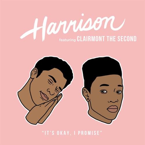 It's Okay, I Promise by Harrison