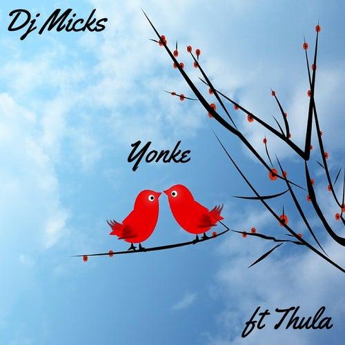 Yonke (feat. Thula) de DJ Micks