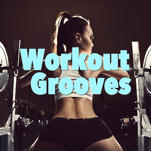 Workout Grooves de Various Artists