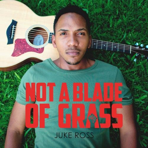 Not a Blade of Grass di Juke Ross