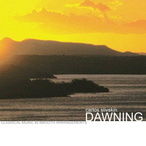 Dawning von Carlos Slivskin