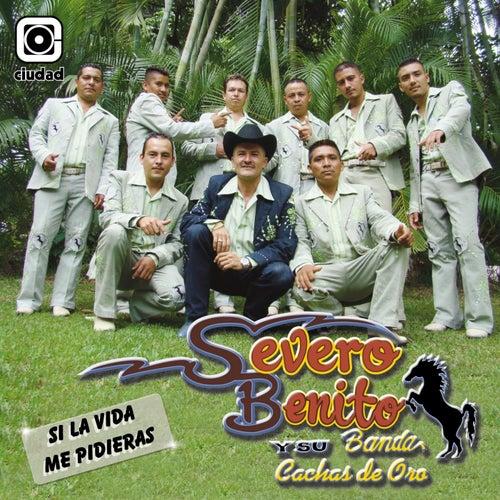 Si la Vida Me Pidieras de Severo Benito Y Su Banda Cachas de Oro