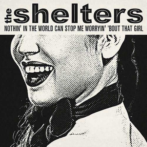 Nothin' in the World Can Stop Me Worryin' 'Bout That Girl de The Shelters