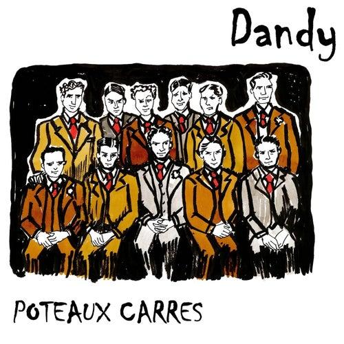 Poteaux carrés de Dandy