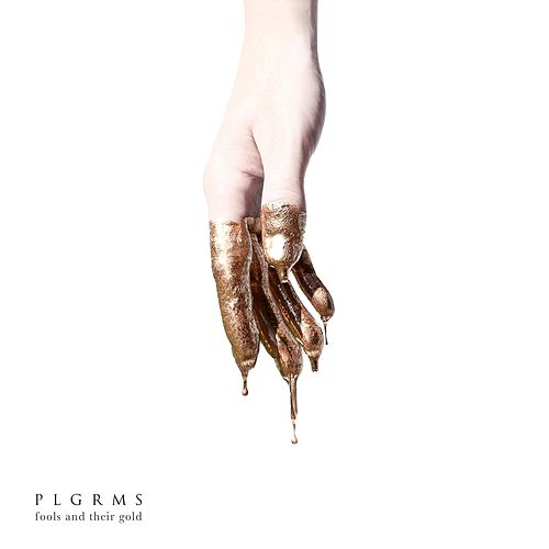 Fools and Their Gold (Radio Edit) von Plgrms