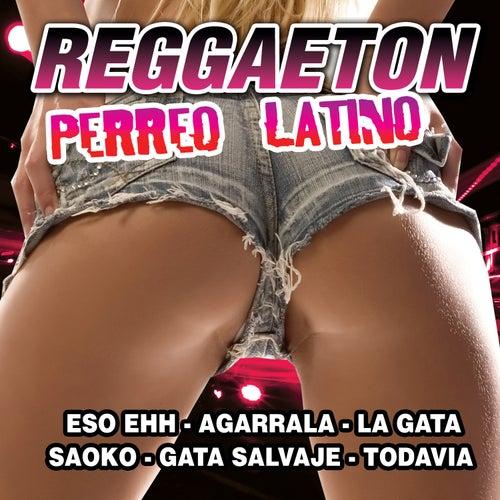 Reggaeton Perreo Latino de Reggaeton Latino