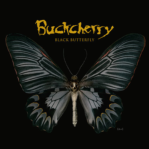Black Butterfly von Buckcherry