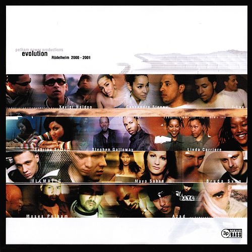Evolution (Rödelheim 2000-2001) von Various Artists