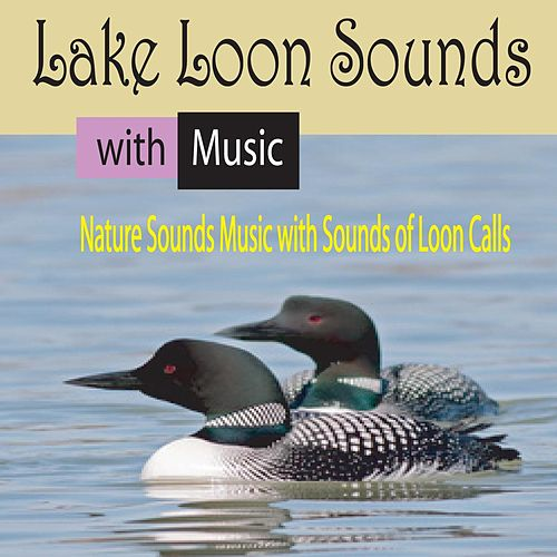 Lake Loon Sounds with Music: Nature Sounds Music with Sounds of Loon Calls de George Winter