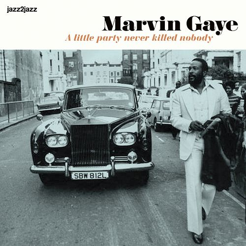 A Little Party Never Killed Nobody - Summer Jam de Marvin Gaye