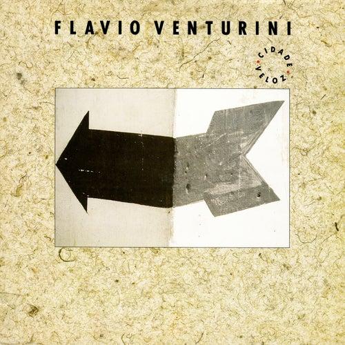 Cidade Veloz de Flavio Venturini
