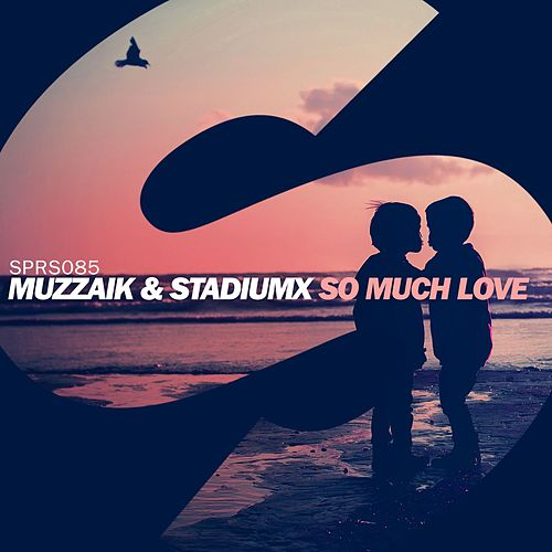 So Much Love de Muzzaik
