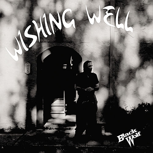 Wishing Well by Black Wolf