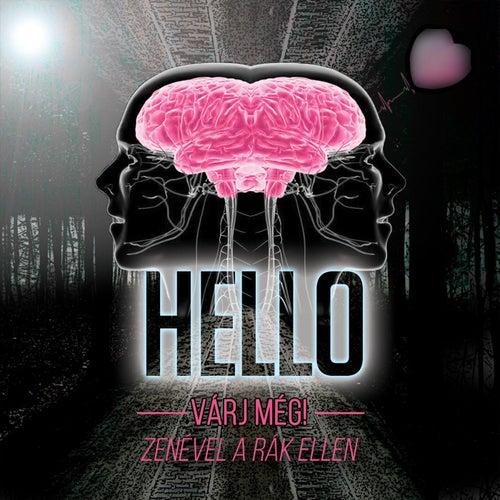 Várj még! - Zenével a rák ellen de Hello