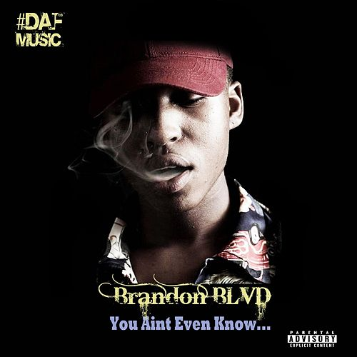 You Ain't Even Know by Brandon Blvd