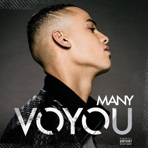 Voyou von Many