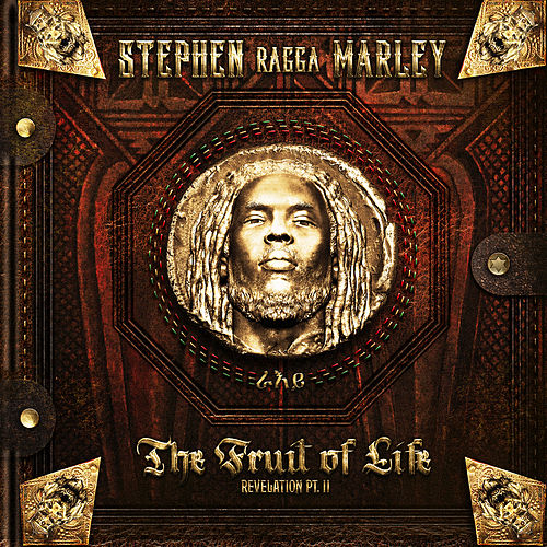 So Strong by Stephen Marley