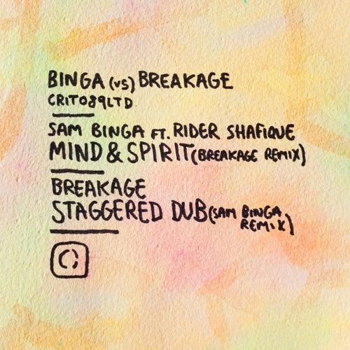 Binga vs Breakage von Various Artists