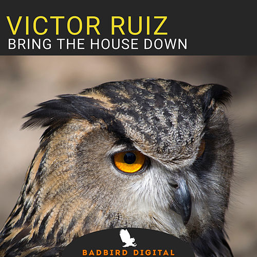 Bring The House Down di Victor Ruiz