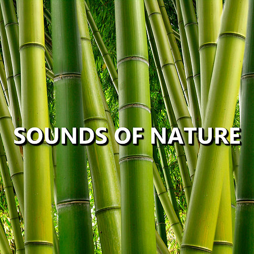 Sounds of Nature de Sounds Of Nature