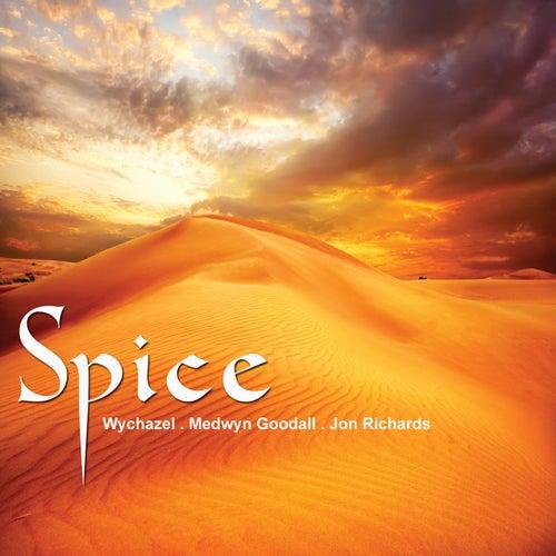 Spice de Various Artists