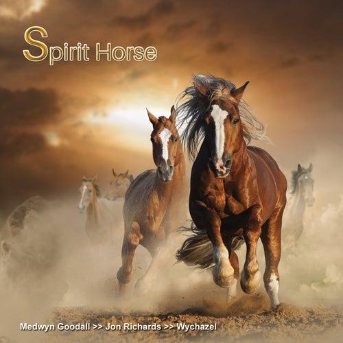 Spirit Horse de Various Artists