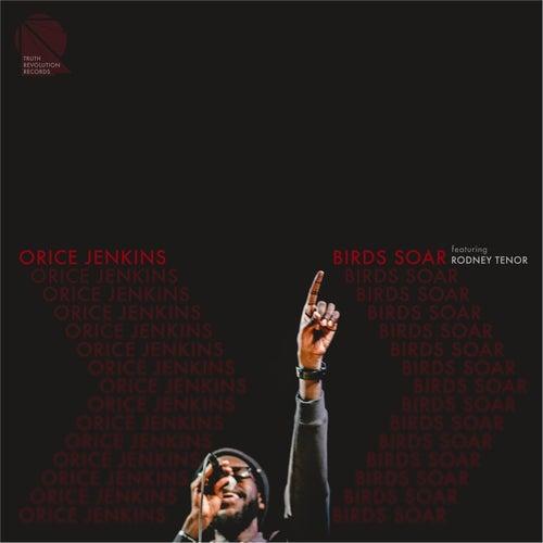Birds Soar (feat. Rodney Tenor) by Orice Jenkins