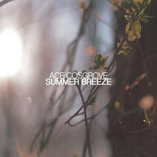 Summer Breeze - Single de Ace Cosgrove