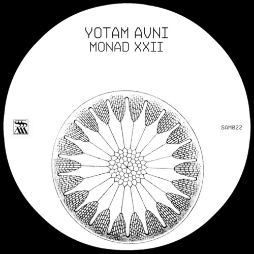 Monad XXII by Yotam Avni