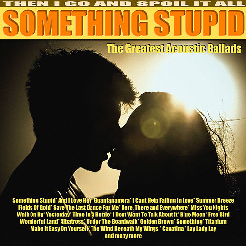 Something Stupid - My Acoustic Moods von Tim Barton